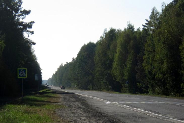 Дорога Кобрин — Гомель будет реконструирована